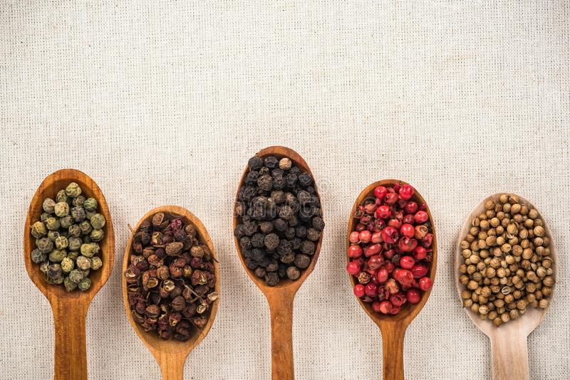 Selection of pepper seeds on wooden spoons stock images