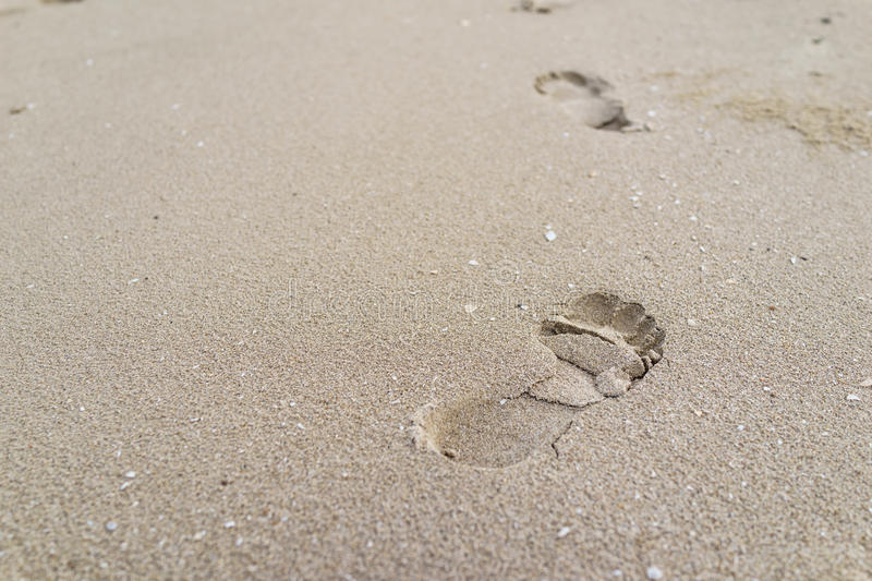 Selective focus on big footprint on the sand as life journey con royalty free stock photos