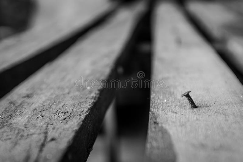 Selective focus of Black and white Old nails on wood stock images