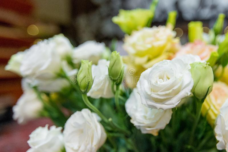 Selective focus of Bouquet  colorful roses. Selective focus of Bouquet colorful roses stock image