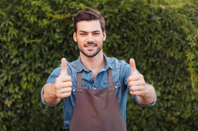 Cheerful gardener in apron showing thumbs up and looking at camera royalty free stock photo