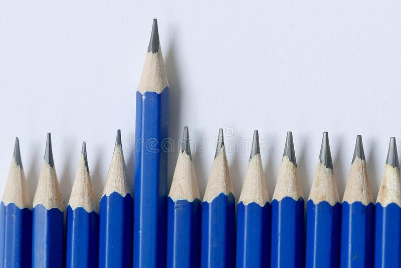 Selective focus and close up of one blue pencil standing out from the row on white background. royalty free stock photo
