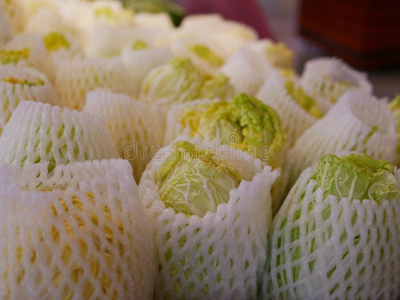 Fresh cabaged covered with foam mesh wrap for sale in a supermarket - buying vegetables / healthy choice royalty free stock photography
