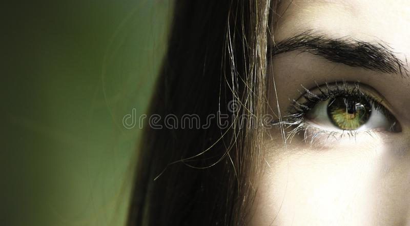 Selective Focus Half-face Closeup Photography of Female's Green Eyes royalty free stock photo