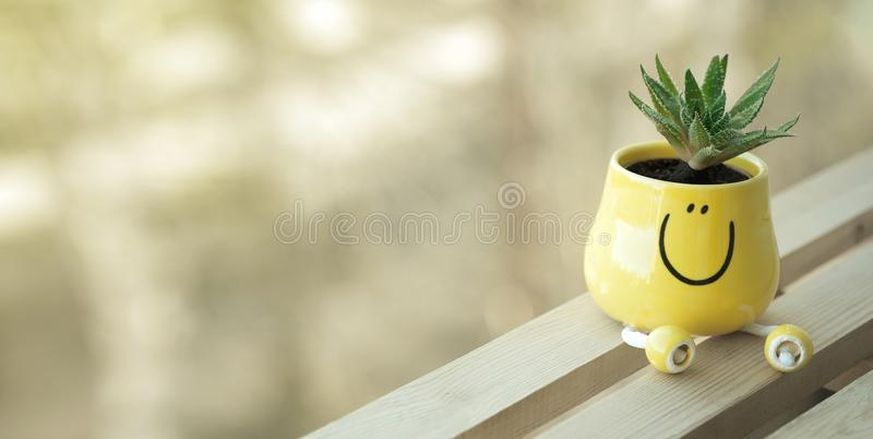 Soft light. Mood of good morning/be happy/always smile. stock photography