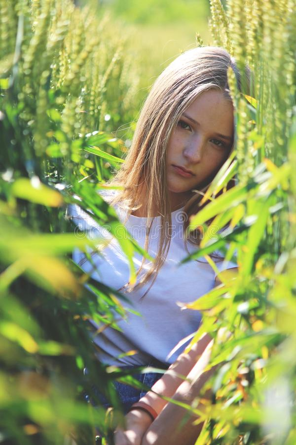 Selective Focus Photo of Woman Wearing White Shirt Between Green Wheat royalty free stock photos