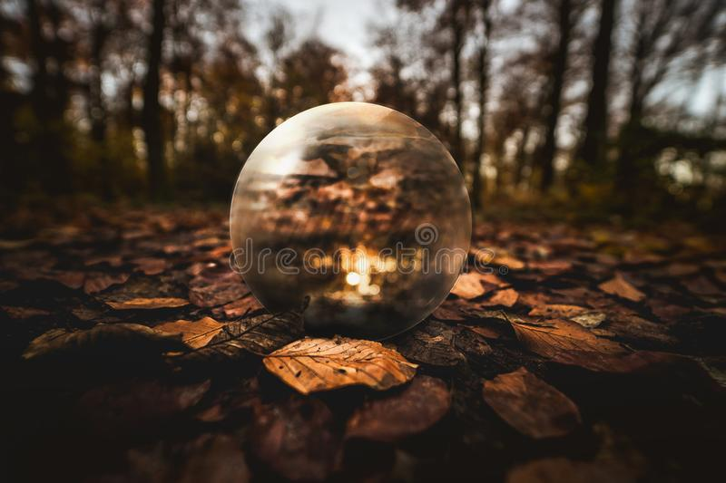 Selective Focus Photography of Clear Glass Ball on Brown Leaves on Ground stock photography