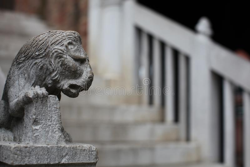 Selective Focus Photography of Gray Concrete Lion Head Stairs Decoration at Daytime royalty free stock image