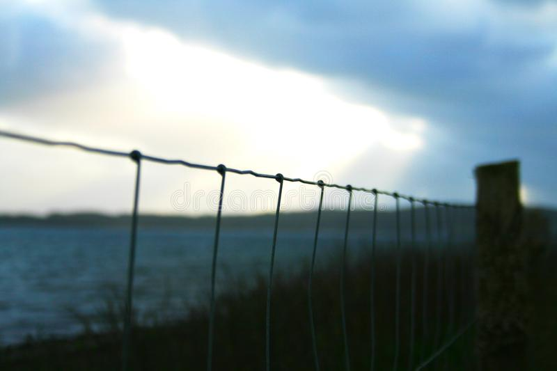 Selective Focus Photography of Gray Wires royalty free stock photography