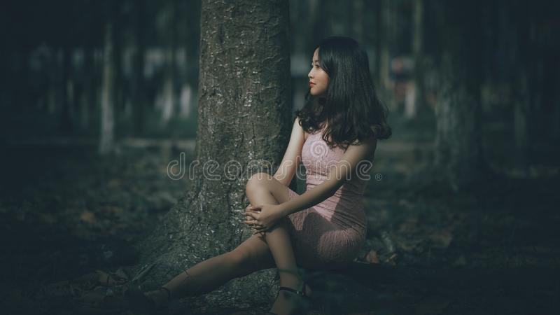 Selective Focus Photography of Woman Wearing Pink Dress Sitting on Tree Roots stock image