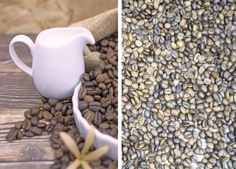 Selective focus of  roast coffee bean and fresh milk  for background and postcard stock photography