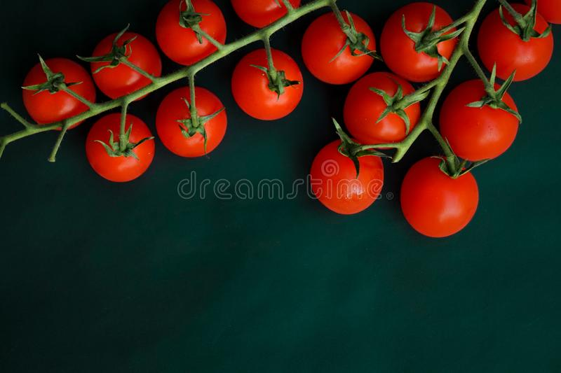 Small red cherry tomatoes. Selective focus, small red cherry tomatoes on green branch on dark green background stock images
