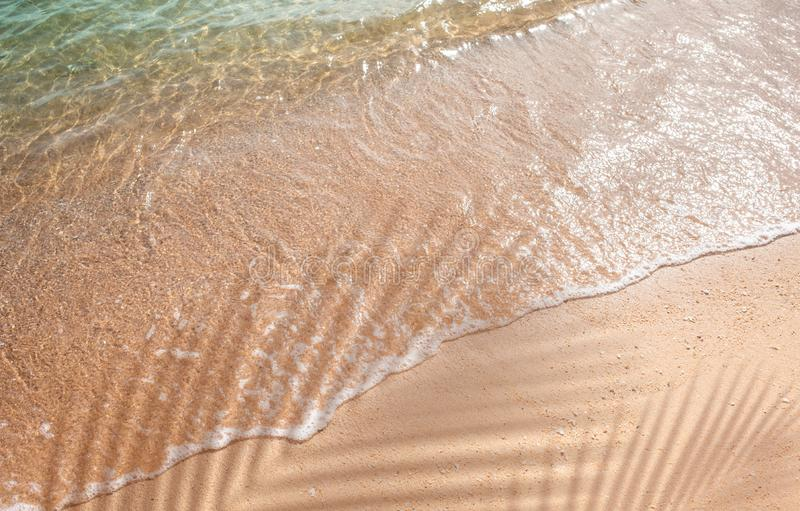 Selective focus of summer and holiday backgrounds concepts with shadow of coconut leaf on clean sand beach. Copy space stock images