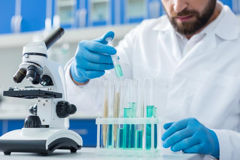 Selective focus of test tubes with biological samples stock photography