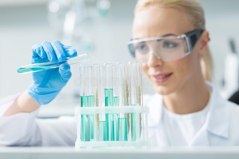 Selective focus of test tubes with chemical liquid royalty free stock image