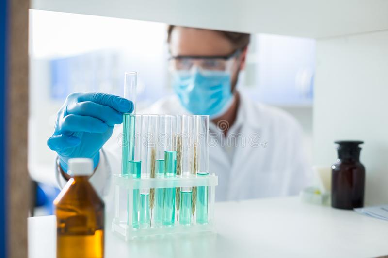 Selective focus of test tubes on the shelf stock photos