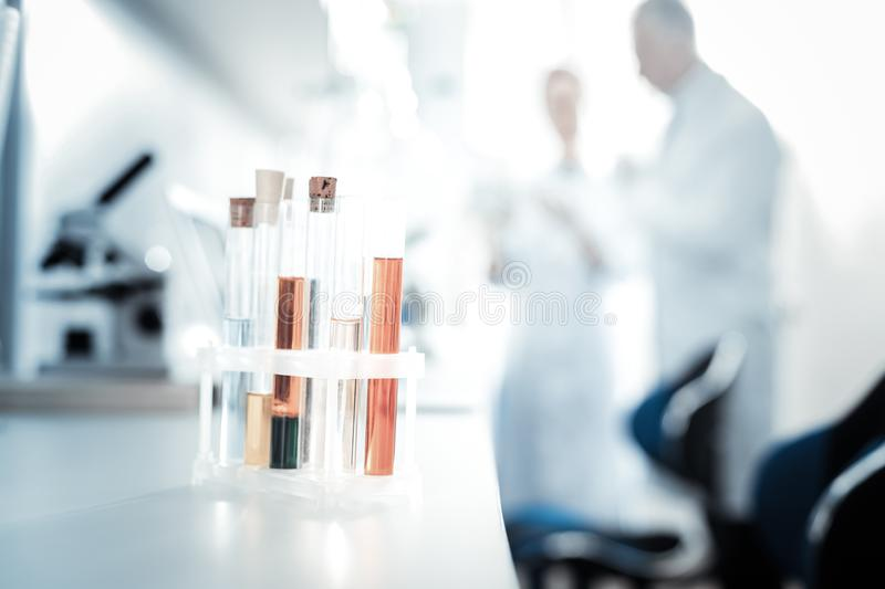 Selective focus of test tubes standing in the rack. Ready for the research. Selective focus of test tubes standing in the rack while being ready for scientific royalty free stock image