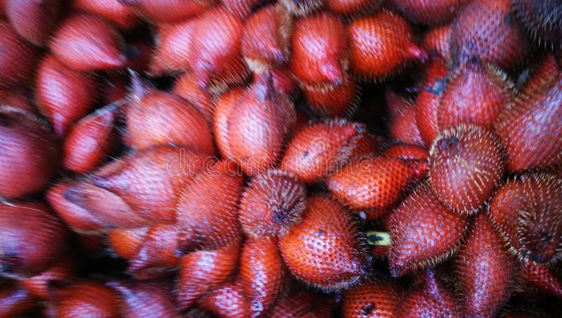 Selective focusing on bunch of Salacca or Snake fruit; the tropical fruit of South East Asia. Background, close-up, heap, nutrition, healthy, diet stock photo