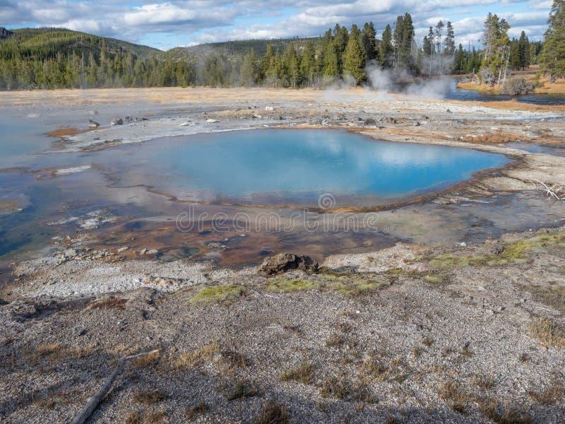 Seledynu Barwiony gejzer w Yellowstone parku narodowym zdjęcie royalty free