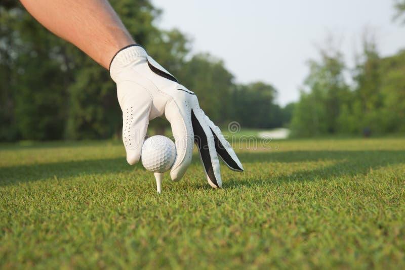 Selektiv foccus av golfarehanden som förlägger bollen på utslagsplats royaltyfria foton