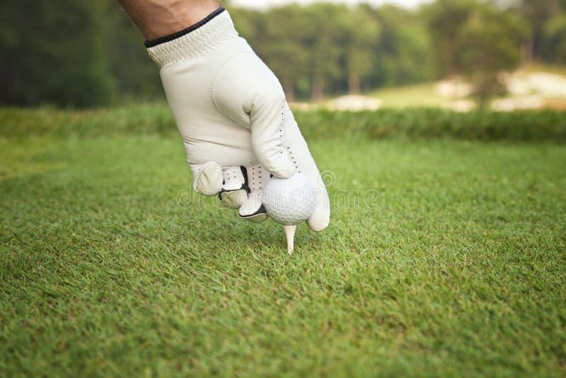 Selektiv fokus av golfares hand som förlägger bollen på utslagsplats arkivbild