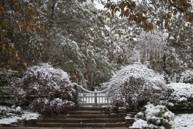 Selektiv vinterunderland - moment och porten som leder till ett gods och omgeende buskar och träd som täckas med en våt tung snö  fotografering för bildbyråer
