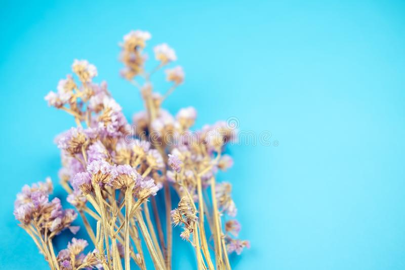 Selektiver Fokus auf lila Statice Blumenstrauß in Vintage Ton stockfotografie