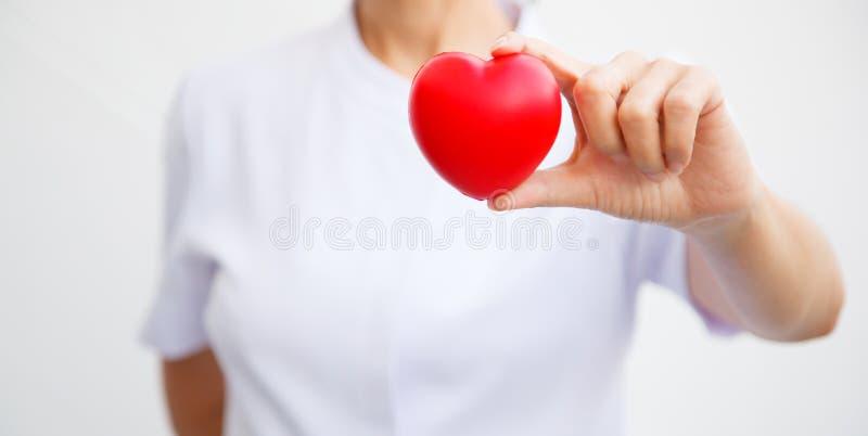 Selektiver Fokus des roten Herzens hielt durch weibliche Krankenschwester ` s Hand und stellte, alle Bemühung gebend, Service-Ver lizenzfreie stockfotografie