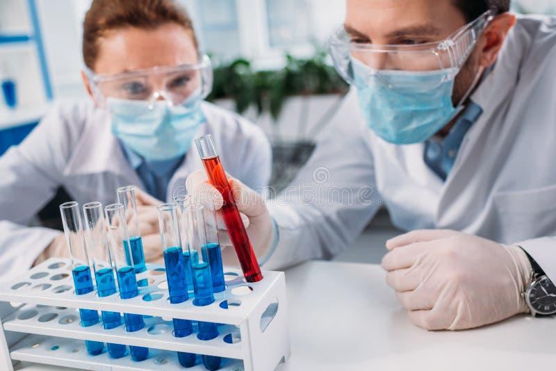 selektiver Fokus von wissenschaftlichen Forschern in den Schutzbrillen und in medizinischen Masken, die Reagenzien in den Rohren  stockfotografie
