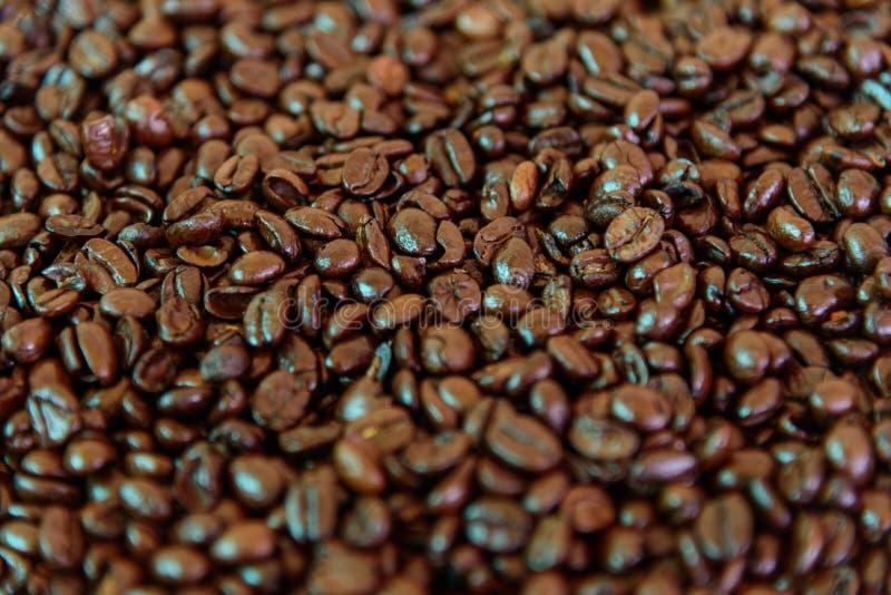 Selektiver Fokus zur Kaffeebohne stockfotografie