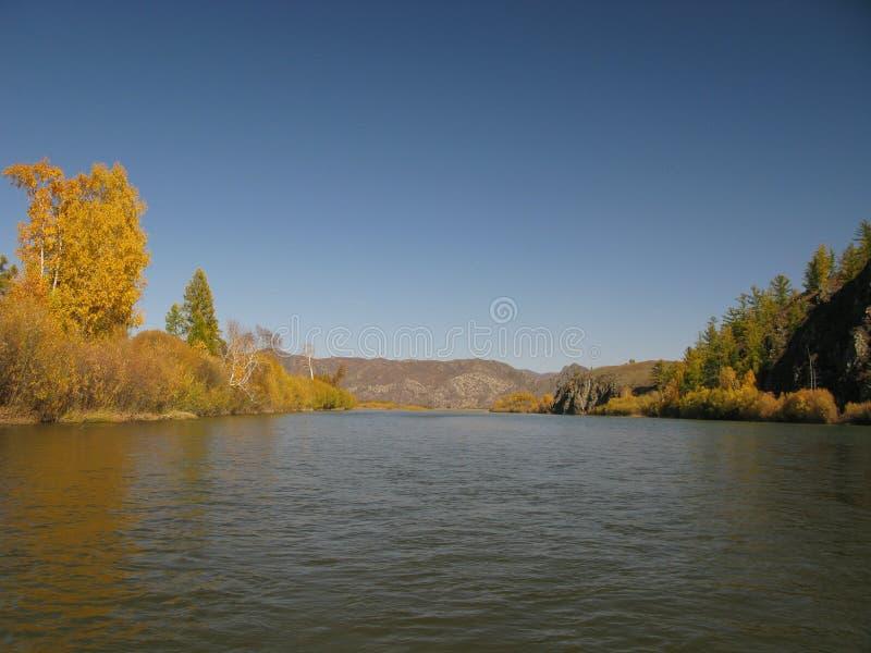 Selengerivier, Mongolië royalty-vrije stock afbeelding