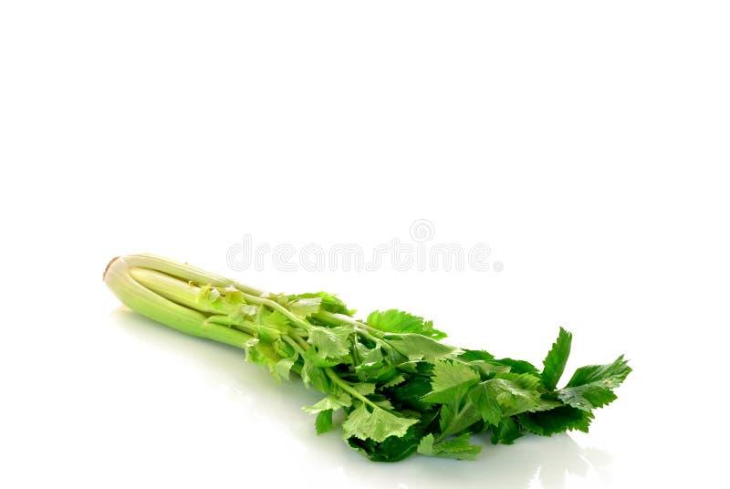 selerowy warzyw zdjęcie royalty free
