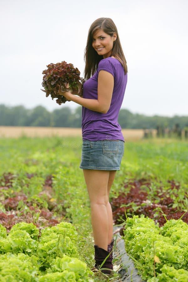 selezionamento della donna rossa dell'insalata fotografia stock