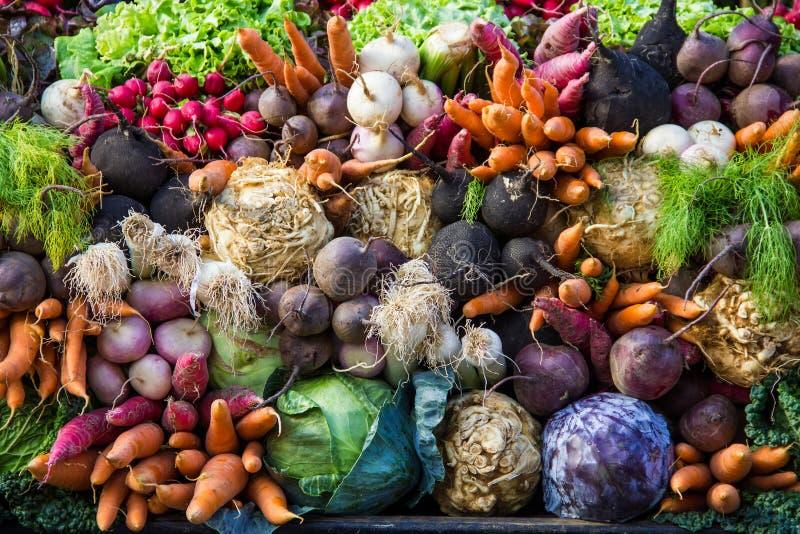 Selezione delle verdure dal mercato di un agricoltore fotografia stock