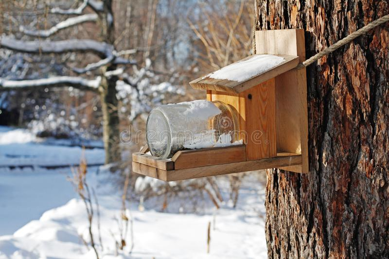 Self-made bird feeder made of boards and glass jar hanging on a tree. In the park royalty free stock image