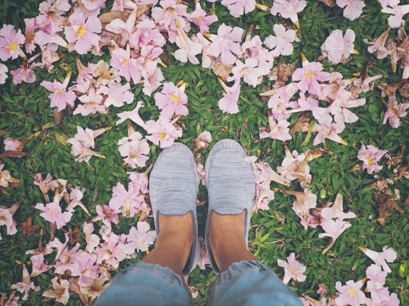 Selfie在桃红色喇叭花的妇女脚下降了在绿草 免版税库存照片