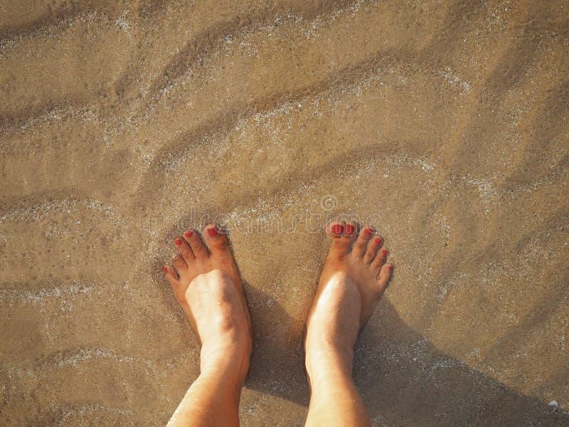 Selfie在米黄沙子夏天日落海滩背景的妇女脚 免版税库存图片