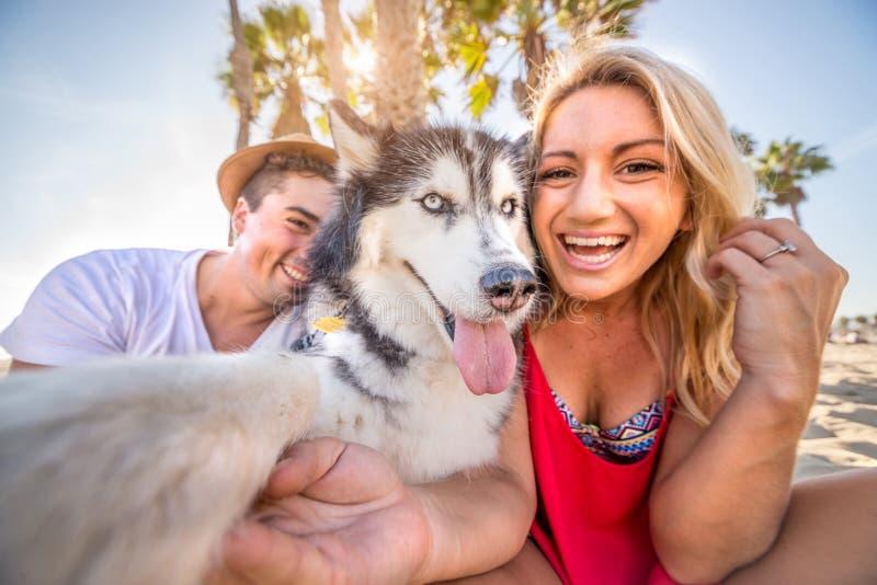 Selfie с собакой стоковое изображение rf