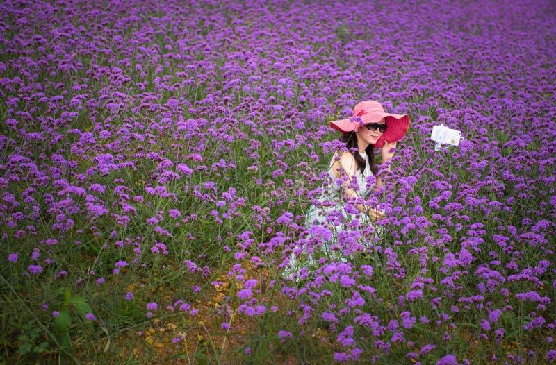 Selfie auf dem Lavendelgebiet stockfotos