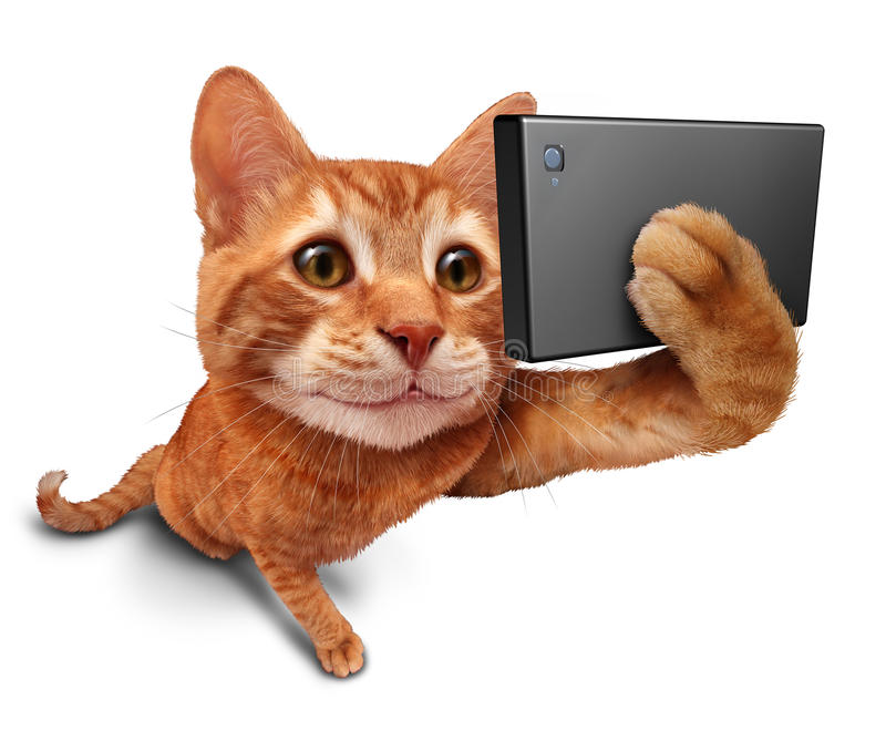 Selfie Cat. On a white background as a cute orange tabby kitty with a smile in forced perspective taking a selfy portrait picture with a smart phone or digital vector illustration