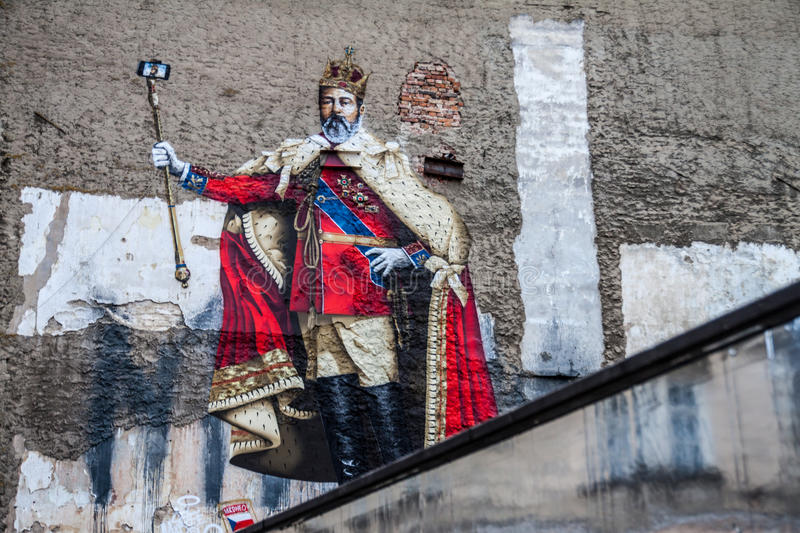 Selfie Made King royalty free stock images