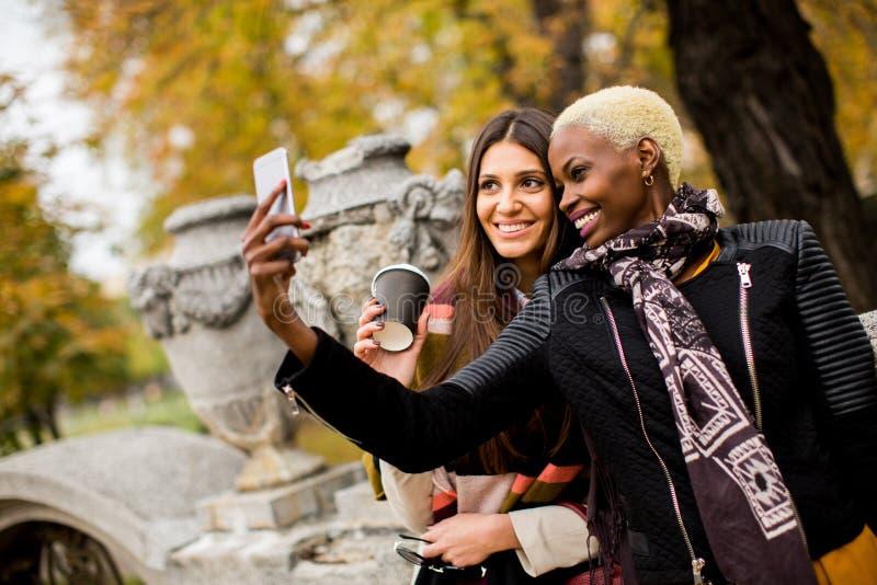 Selfie outdoor. Young african american and caucasian women taking selfie outdoor stock photos