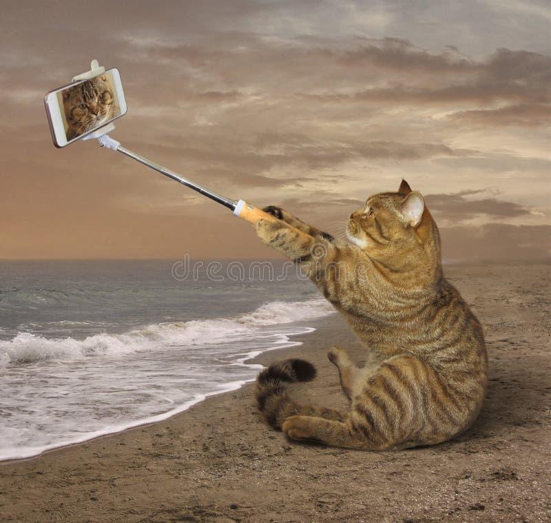 Selfies auf dem Strand lizenzfreie stockfotos