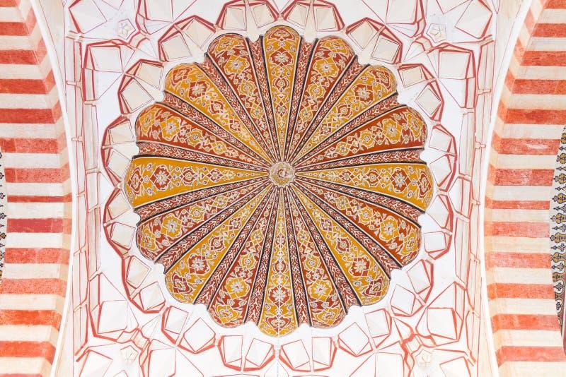 Selimiye moské royaltyfri foto