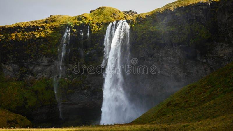 Seljalandfoss冰岛瀑布 免版税库存照片