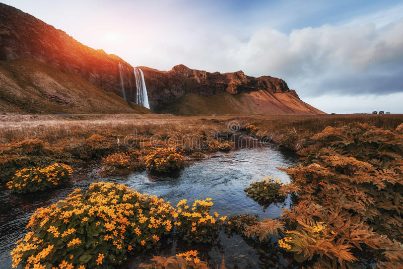 Seljalandfoss vattenfall Solig dag för härlig sommar arkivbild