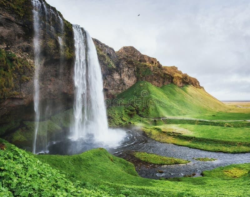 Seljalandfoss vattenfall Solig dag för härlig sommar royaltyfri foto