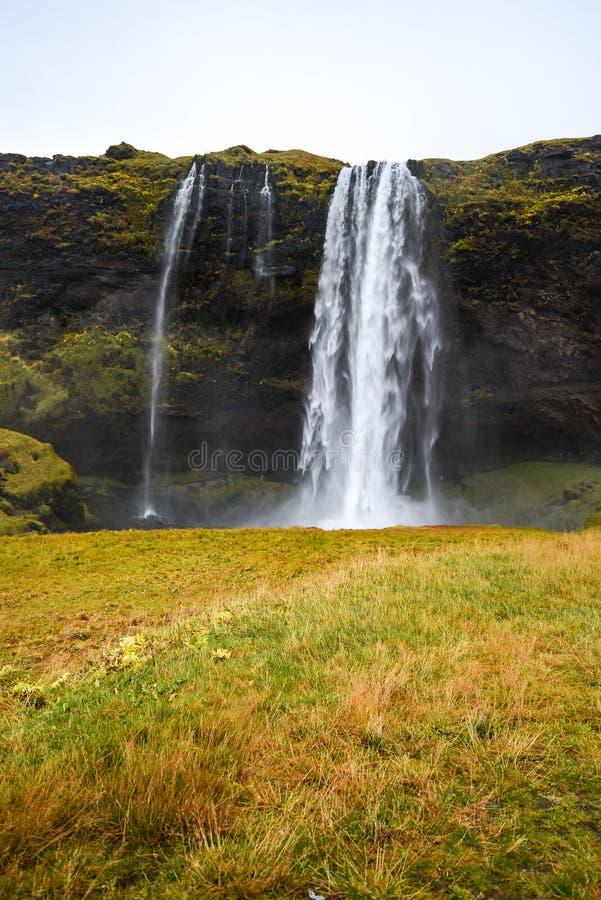 Seljalandsfoss, известный водопад в Исландии стоковое изображение