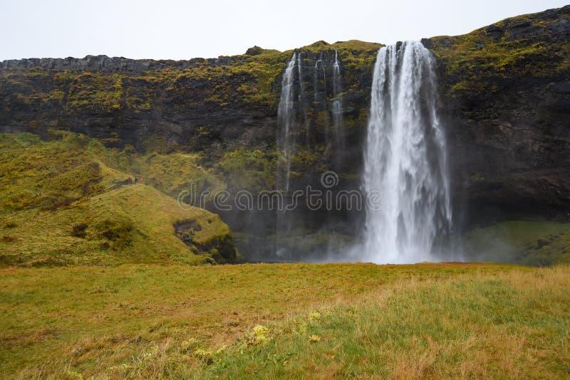 Seljalandsfoss, известный водопад в Исландии стоковое изображение rf