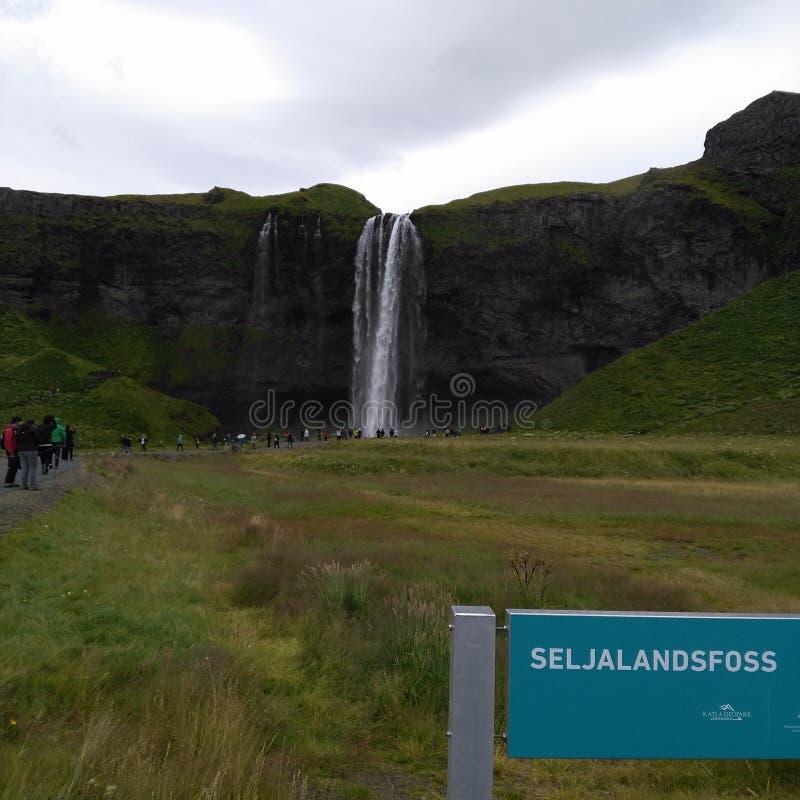 Seljalandsfoss 免版税库存照片